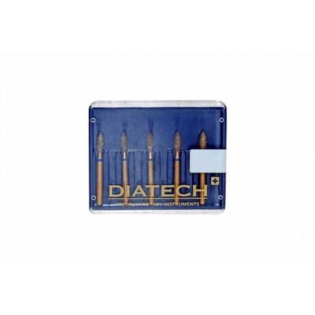 Fraises Diatech /5